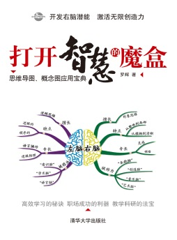 打开智慧的魔盒:思维导图、概念图应用宝典 罗辉 清华大学出版社