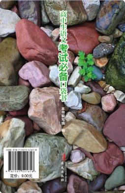 高中生语文考试必备口袋书  华文出版社