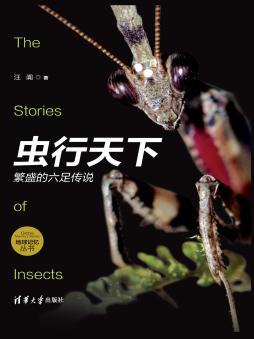 虫行天下:繁盛的六足传说 汪阗 清华大学出版社